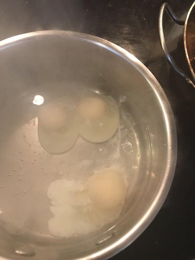 eggs in water.jpg