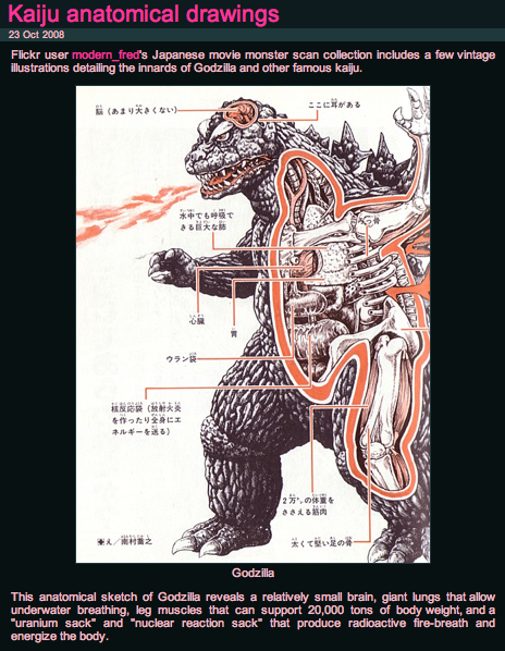 kaiju_anatomy.png